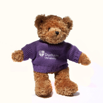 University Toffee Bear