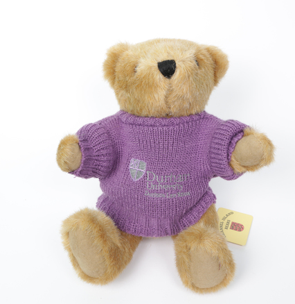 Durham University Law School Bear