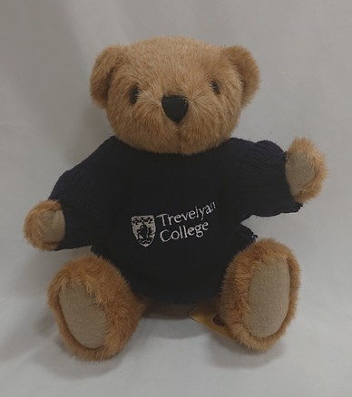 Trevelyan College Bear