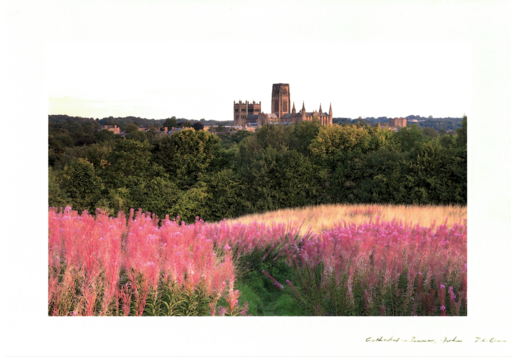 John Erwin Card - Cathedral in Summer, Durham