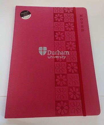 A4 Easynote Notebook - Pink