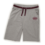Men's Shorts Light Grey/Plum