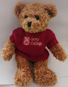 Grey College Bear
