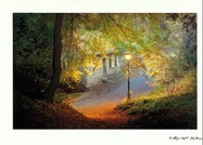 John Erwin Card Cottage Light